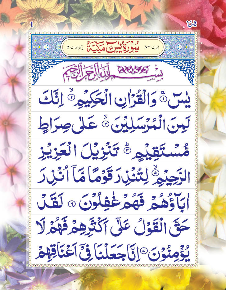 surah_yaseen_big_9_lines_1