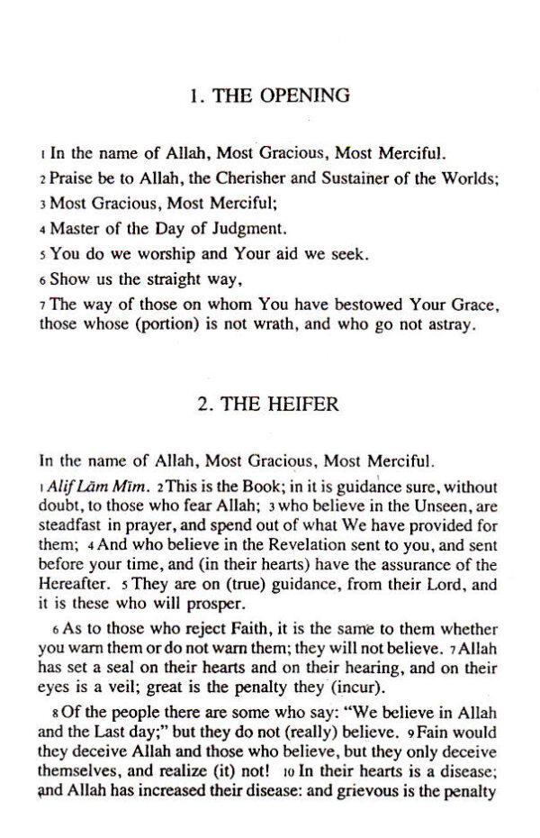 Meaning_of_Holy_Quran_AYAli_Dawa_Edition_1