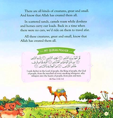 Bedtime Quran Stories_3
